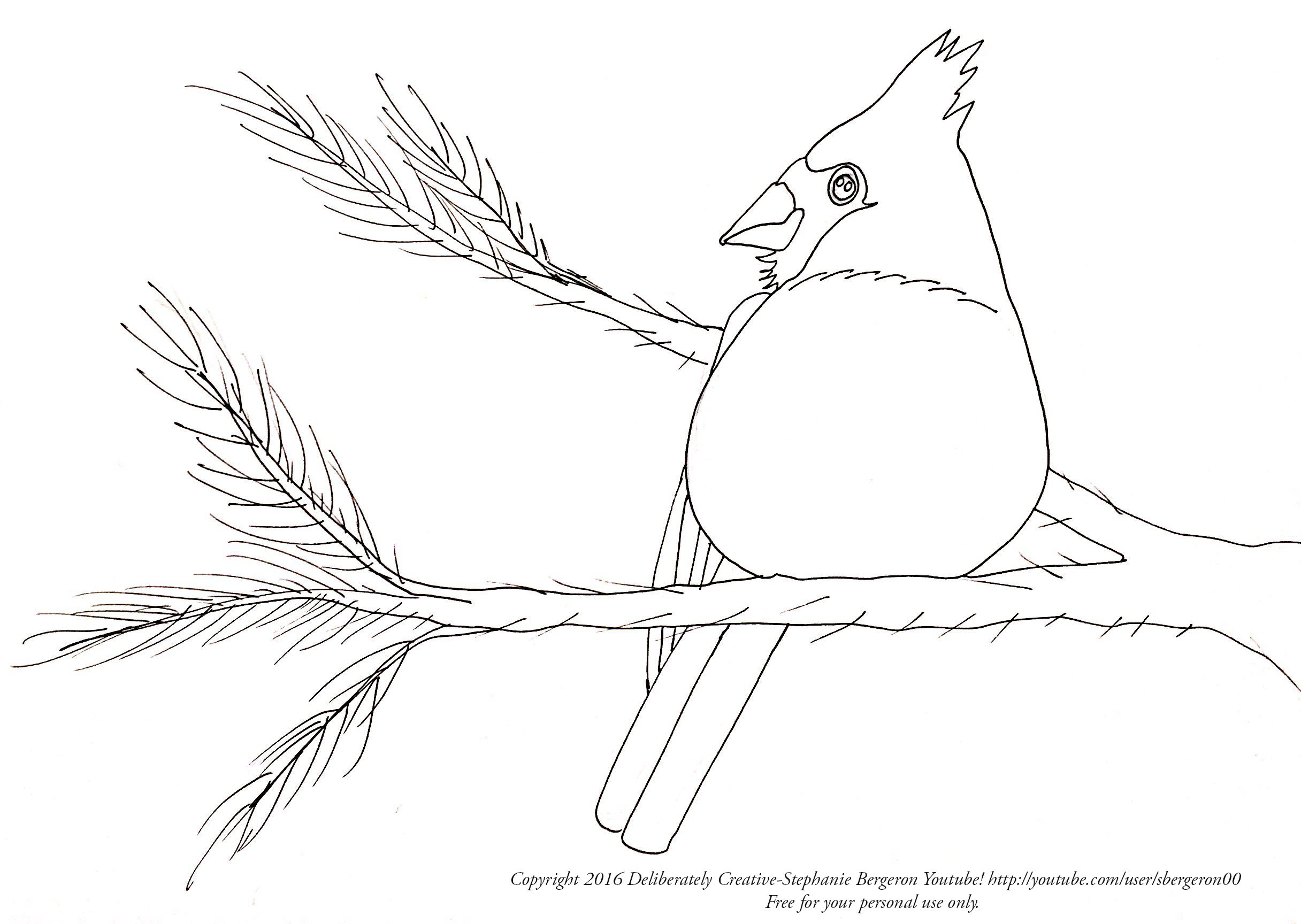 Free Deliberately Creative Winter Cardinal Traceable Or Coloring