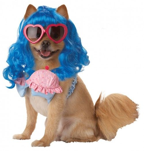 Katy Perry California Girl Dog Costume Funny Pet Costumes Dog