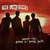 libertines https://records1001.wordpress.com/
