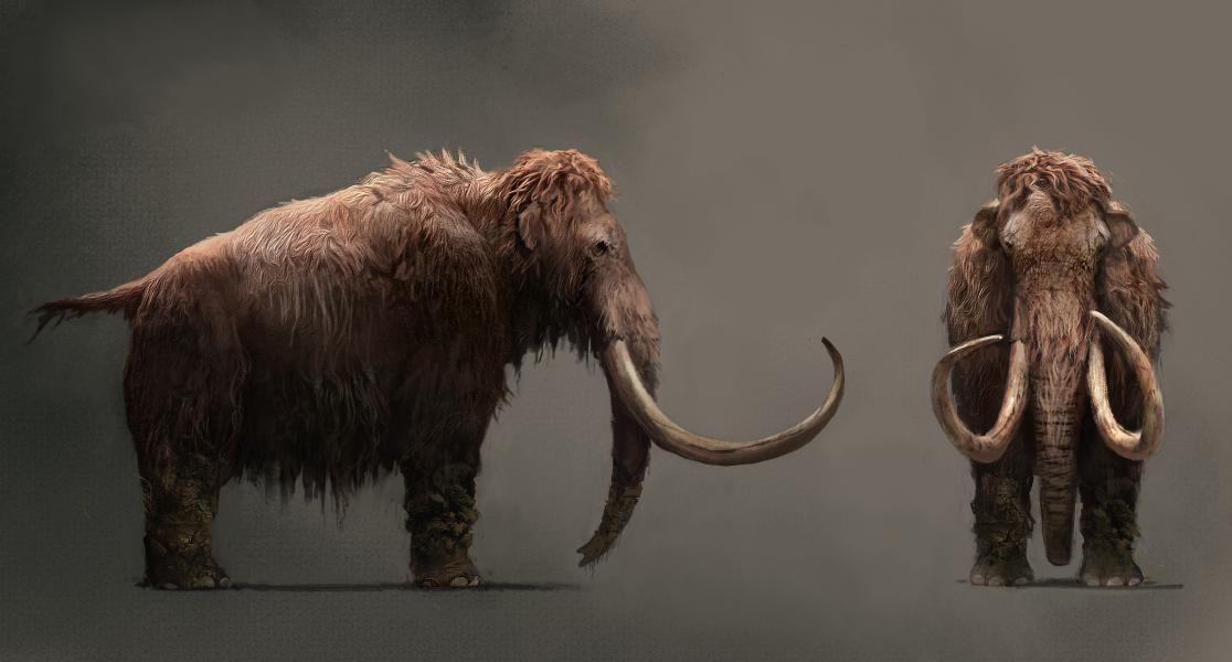Far Cry: Primal | Far Cry | Pinterest | Animales prehistóricos ...
