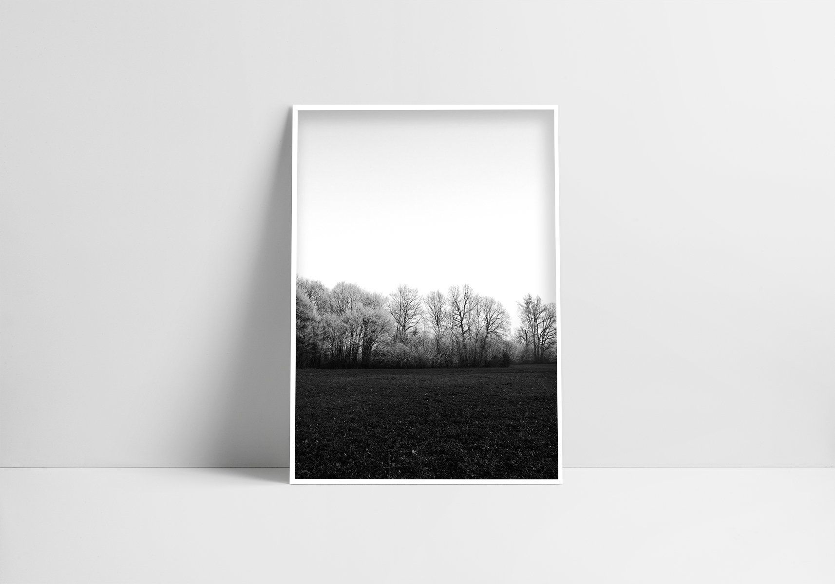 Black White Forest Digital Print Instant Download Nature Photography Modern Minimalist Black And White Monochrome Printable Tree Wall Decor Nature Photography Digital Prints Tree Wall