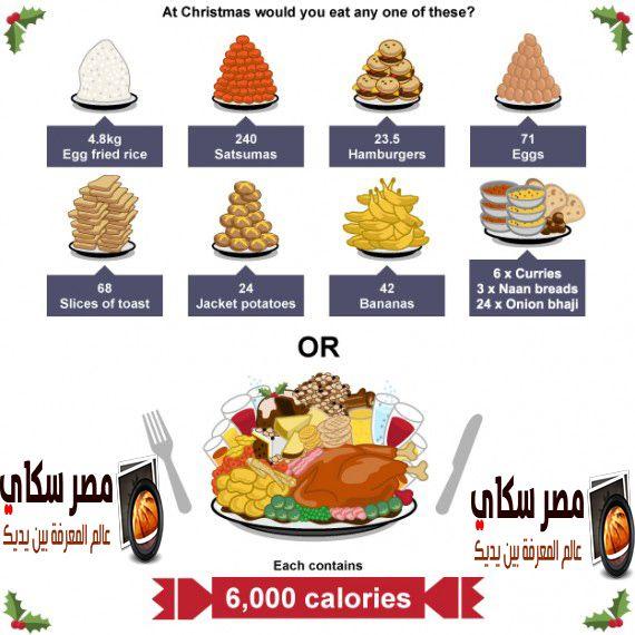 كيفية ترتيب الطعام حسب الأهمية وكيف يتم حساب السعرات الحرارية Food Order Hamburger With Egg Onion Bhaji Food