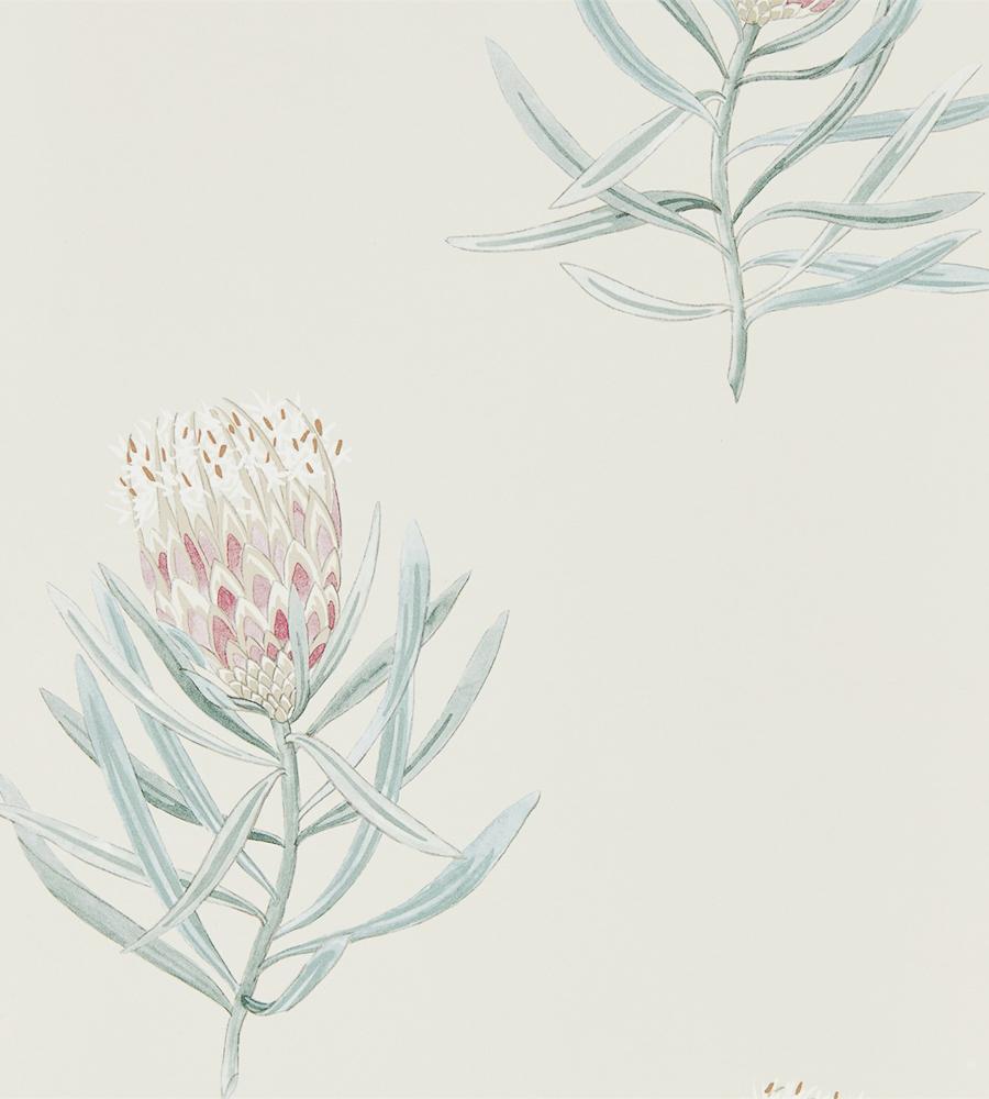 Английские обои Sanderson, коллекция Art of the Garden