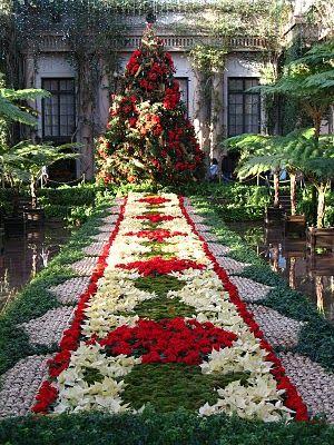 591850868245dc063f42c432775f70b9 - How Much Is A Longwood Gardens Membership