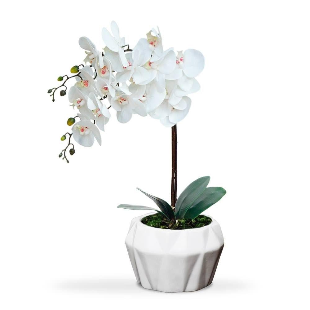 Arranjo De Orquideas Com Imagens Decoracao Com Flores
