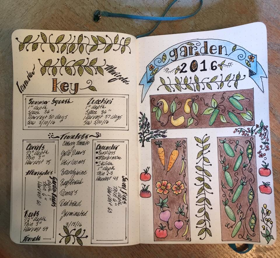 Pin By Therese Pennington On Bujo Journal Bullet Journal Goals