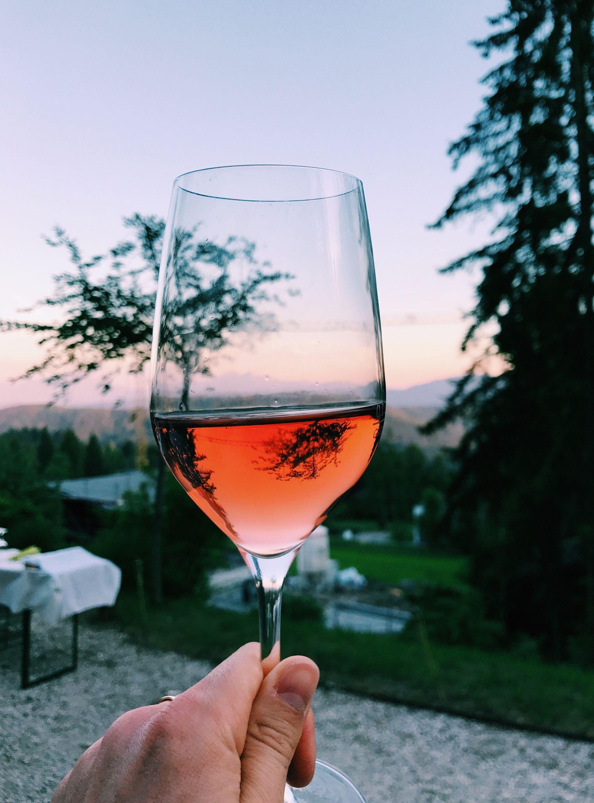Celebrate World Vegan Day With These Vegan Wines Vegan Wine Malbec Wine Best Wine Clubs