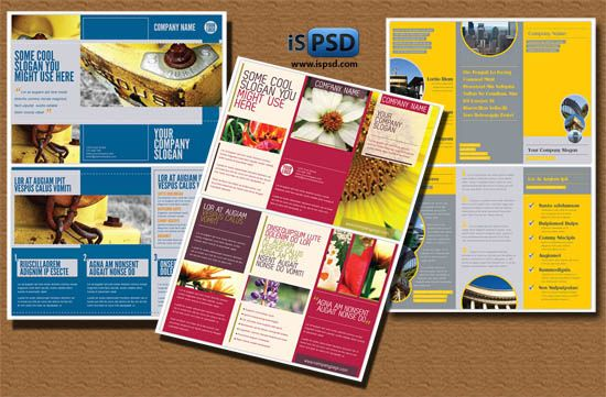 Colorful Trifold Psd Template At Httpprintriverspot2012