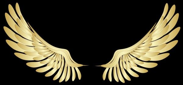 Wings Png Images Vector And Psd Files Free Download On Pngtree In 2021 Wings Logo Logo Design Free Templates Wings Icon