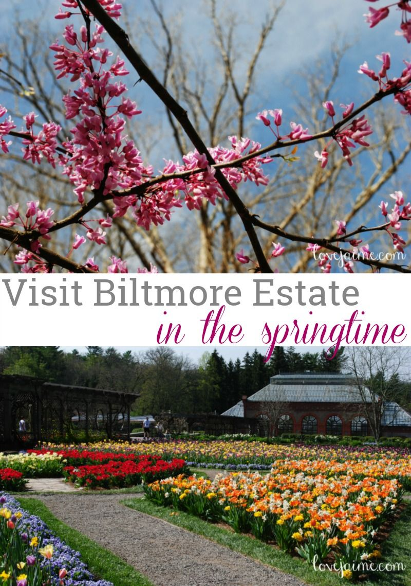 591a7d5c9647bad62e1c9306b29b8ec8 - Best Time To Visit Biltmore Gardens