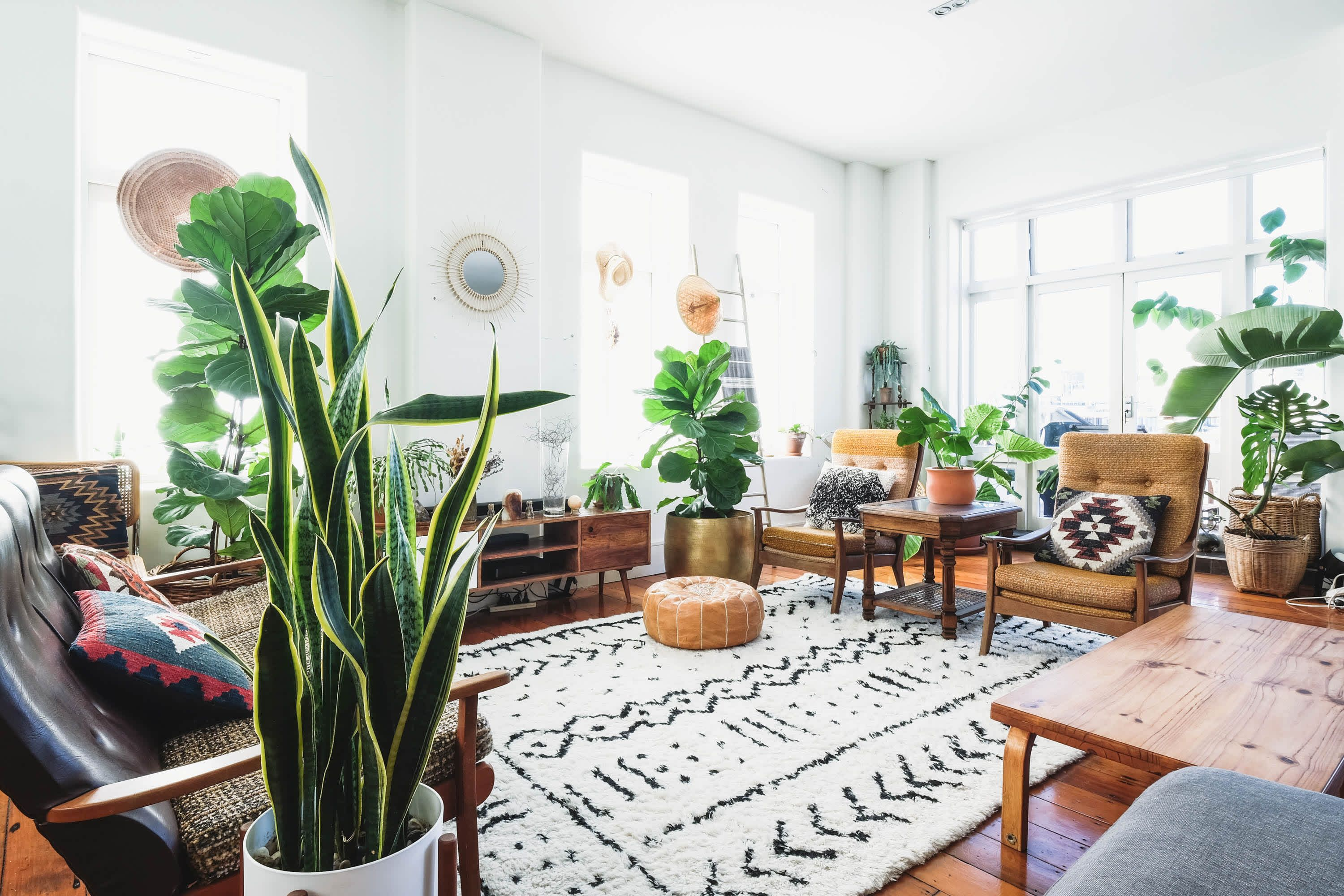 There Are More Plants Than Furniture In This Sunny New Zealand Loft In 2020 Home Decor Decor Interior