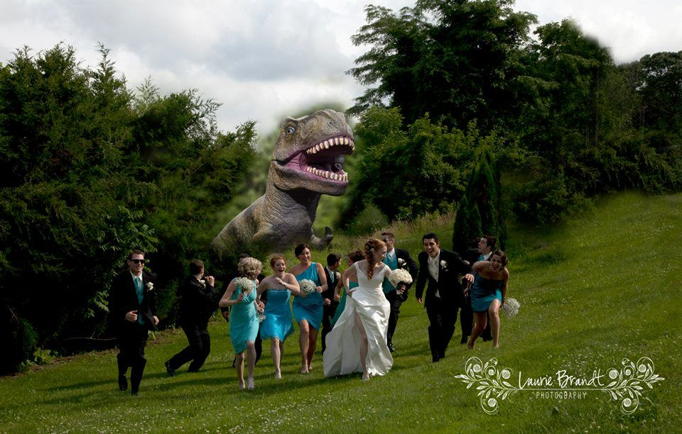 LAURIE BRANDT PHOTOGRAPHY Wedding Photography Jurassic Park