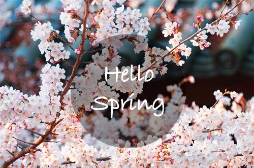 Αποτέλεσμα εικόνας για spring pictures tumblr