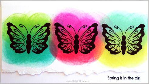 Imagine - Butterfly Trio