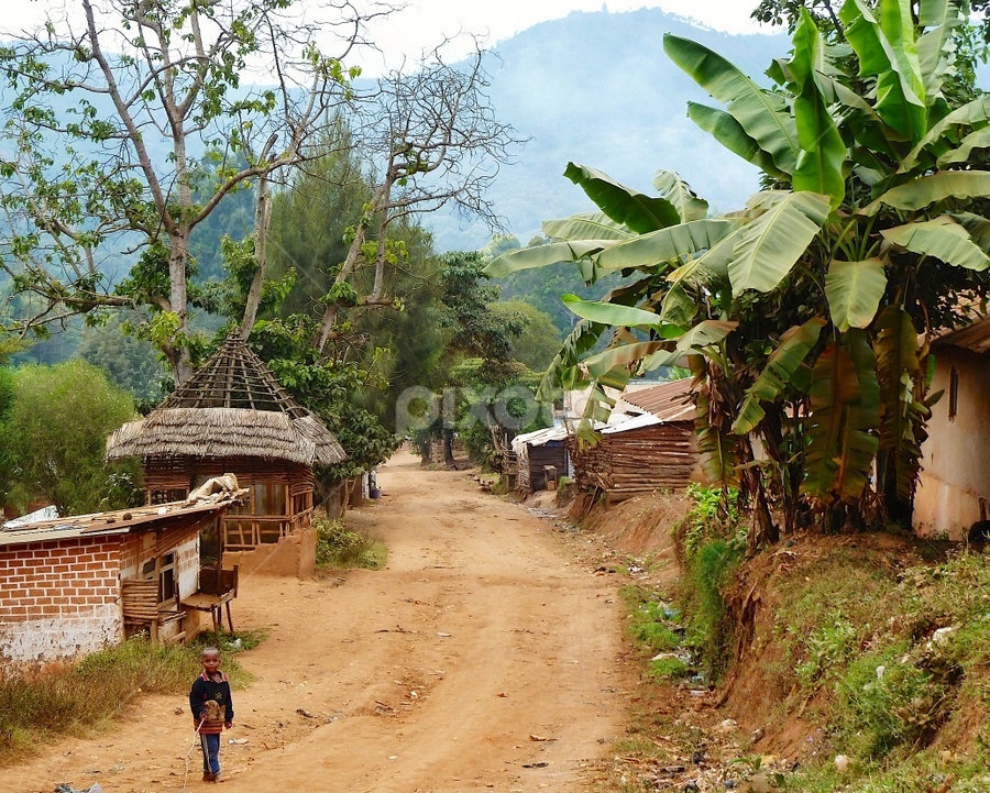 Usambara Village By Leigh Thomson City Street Park Street - Poor cities in africa