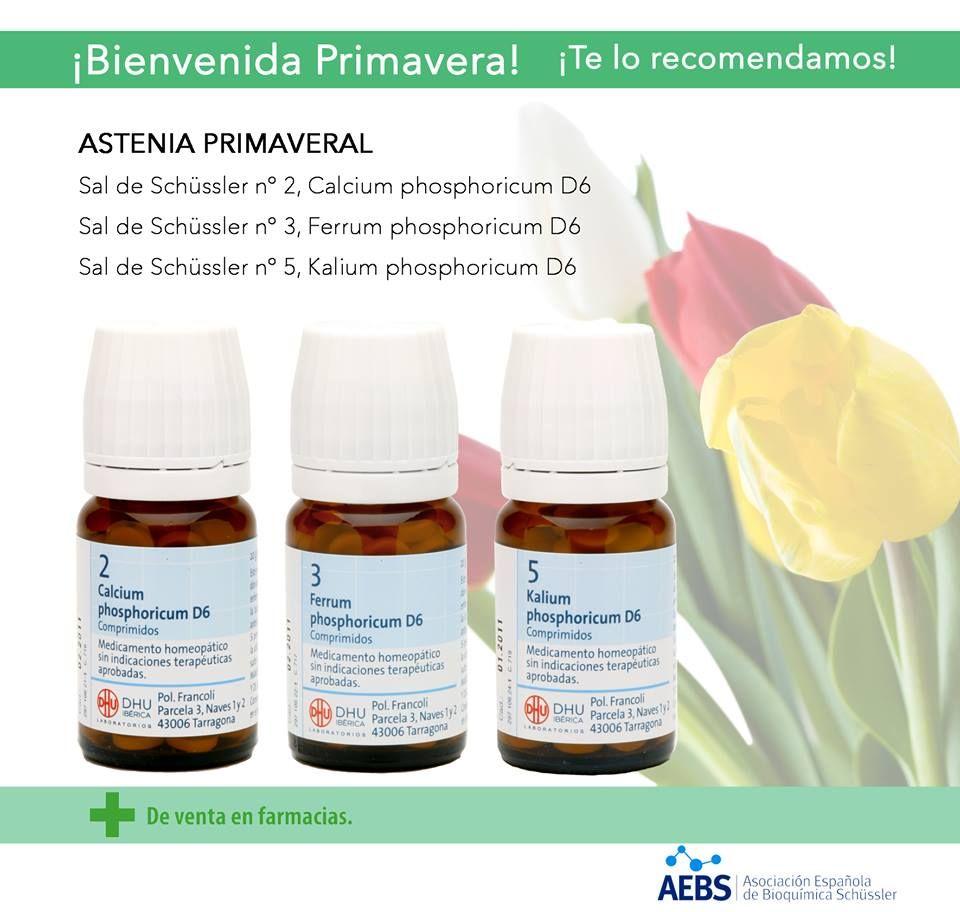 Te Sientes Agotado Astenia Primaveral Sales De Schüssler Salud Natural Salud Alergias