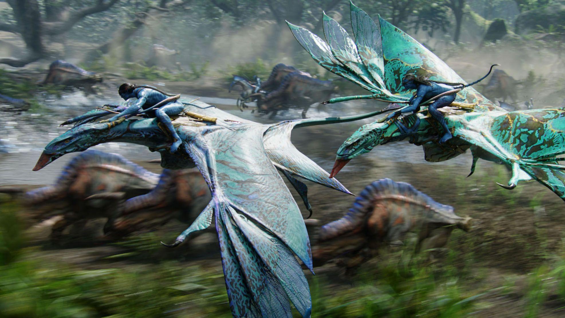 драконы из аватара картинки здесь