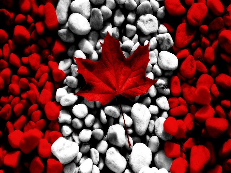 Image result for canada outlined by the canadian flag