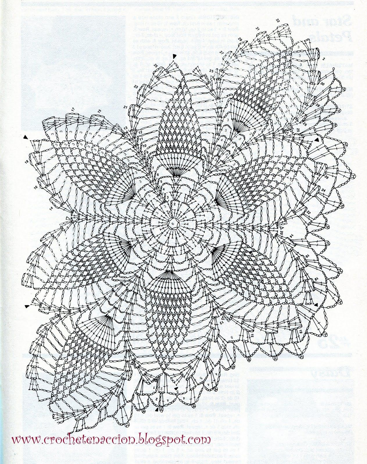 Pineapple Crochet Doily Diagram 1998 Honda Accord Stereo Wiring Esquema Pinterest Doilies