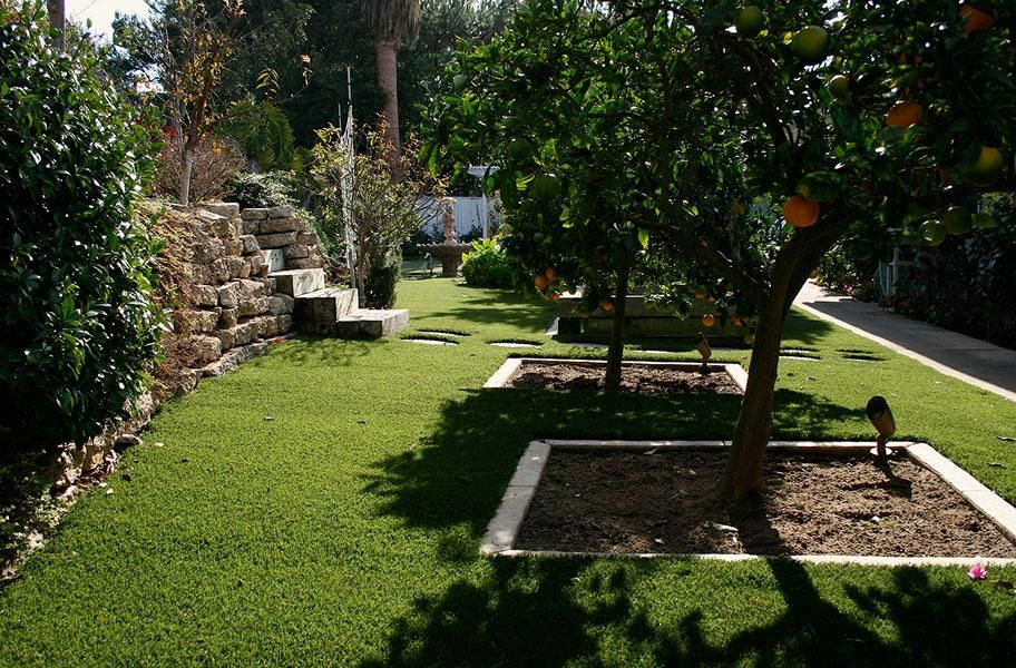 Austin Elite Turf Rolls With Images Artificial Grass