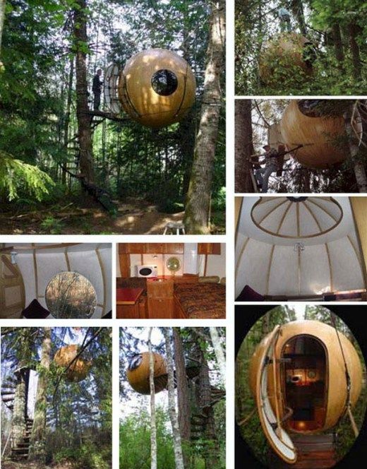 Amazingly Awesome Tree Houses (photos) - B on the ball