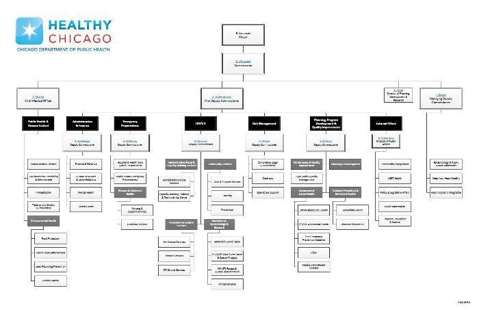 Ics Organizational Chart Ics Organization Chart Showing All Parts