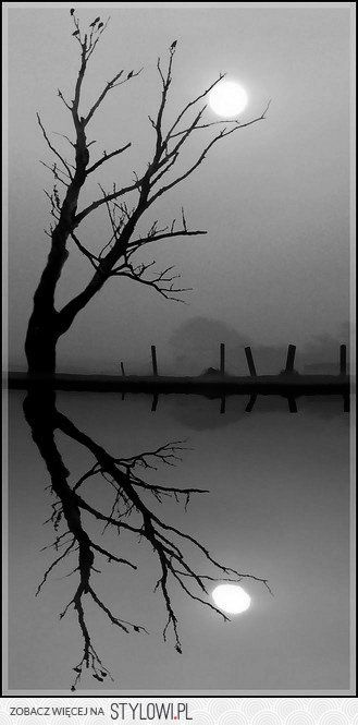 Lonely Reflections....been there done that.