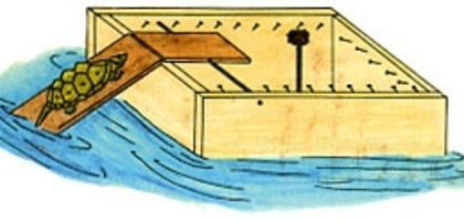 What are floating turtle traps for Dunn fish farm