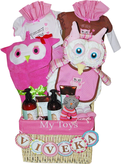 Trendy baby owl themed gift basket toronto baby gift baskets trendy baby owl themed gift basket toronto negle Image collections