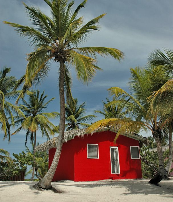 Tropical Beach House Surrounded By Palm Trees Oh The Possibilities Beach Bungalow Exterior Beach Cottages Beach Cottage Style