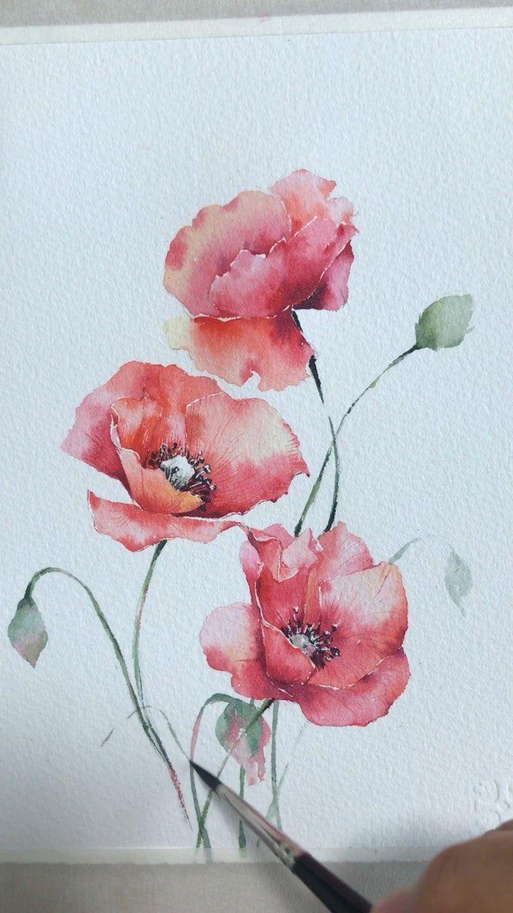Epingle Par Catouf Sur Aquarelles Peinture Fleurs Coquelicots