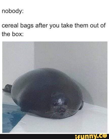 Nobody Cereal Bags After You Take Them Out Of The Box Ifunny Ifunny Memes Funny Memes
