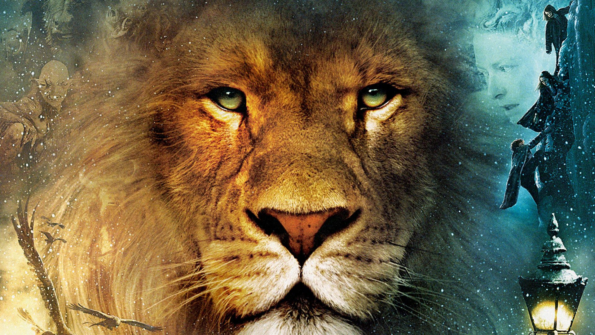 Aslan From The Chronicles Of Narnia Lion Poster Lion Pictures