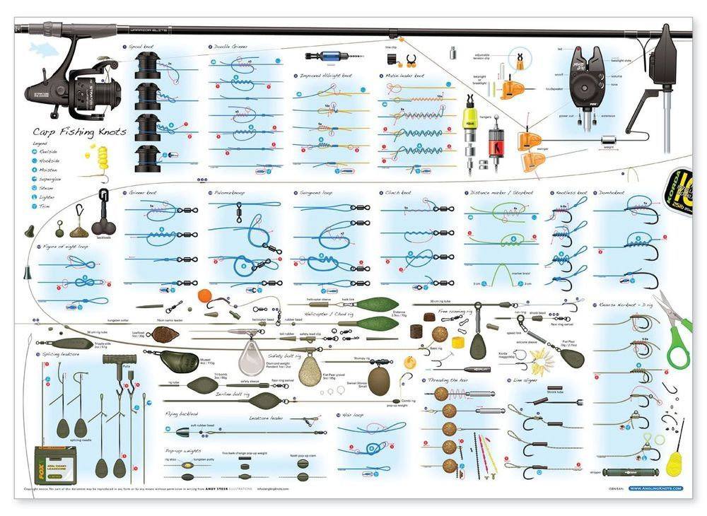 angling knots poster carp coarse and predator fishing
