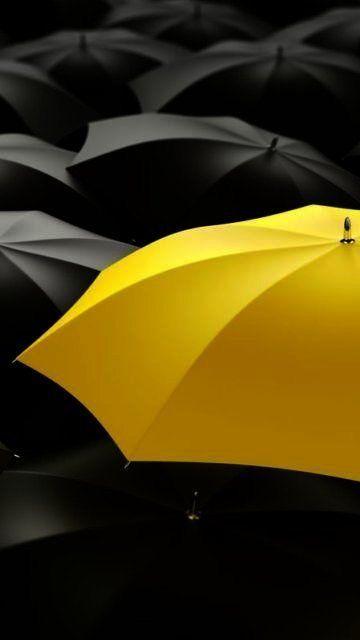 black and yellow umbrellas