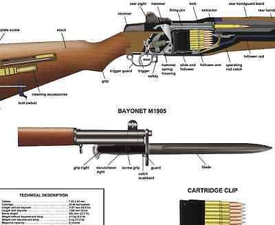 Surprising Parts Diagram M1 Garand Guns Pinterest Moreover M1 Carbine Rifle Wiring 101 Photwellnesstrialsorg
