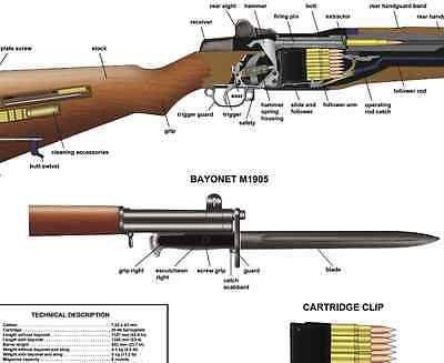 m1 rifle diagram venn formula for 2 sets poster 12 x18 us garand manual exploded parts d day battle ww2