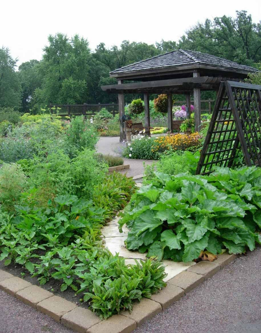 Membuat Kebun Mini