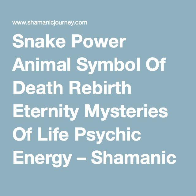 Snake Power Animal Symbol Of Death Rebirth Eternity Mysteries Of