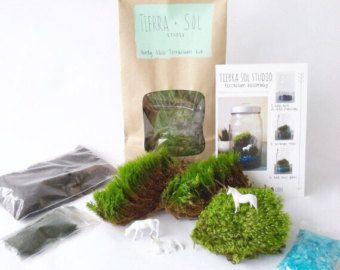 Kit terrario DIY Deer Moss terrario Kit Fawn por TierraSolStudio