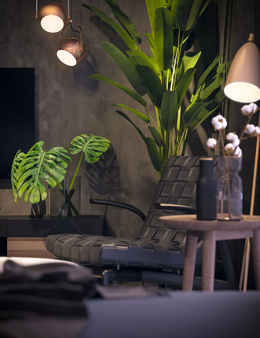 These Plants Are Beautiful And Can Add So Much To A Home My