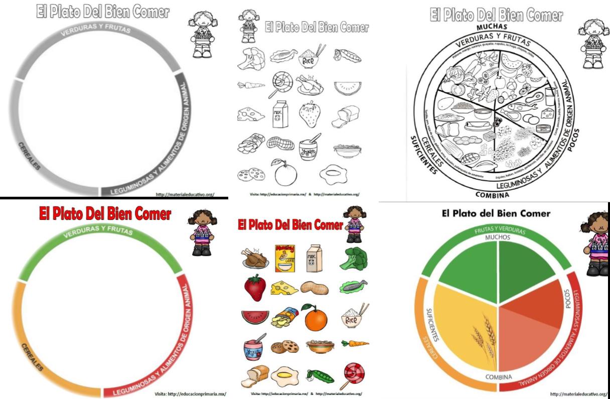 El plato del bien comer para colorear, explicar y armar | Pita ...