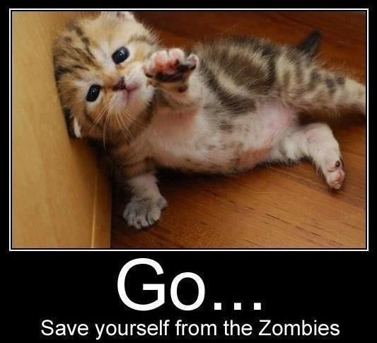 2 of my favorite things: adorable kittens and zombie attacks.  Win Win!