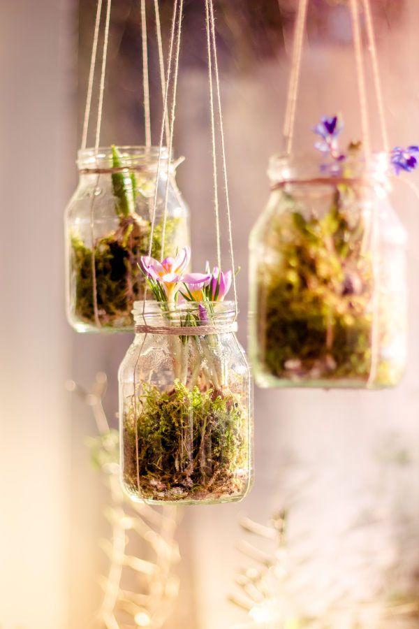 diy anleitung h ngende fr hlingsblumen pflanzen diy pinterest. Black Bedroom Furniture Sets. Home Design Ideas