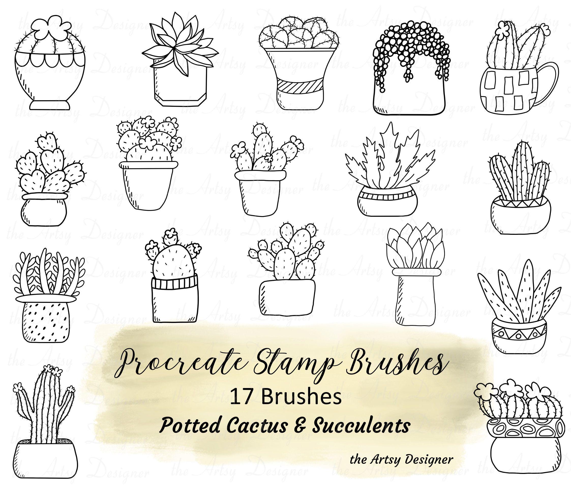 17 Procreate Brushes Bundle Cactus Succulents Lineart Brush Stamps Procreate Stamps Brushes Cacti Potted Plants Brushes Southwest Designs Procreate Brushes Procreate App Procreate