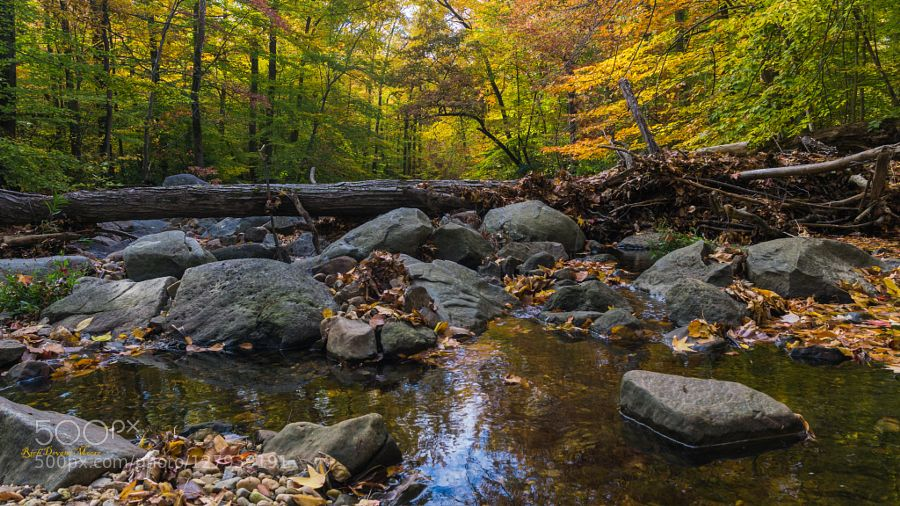 Hiking made Easy by Rich_Devant #nature