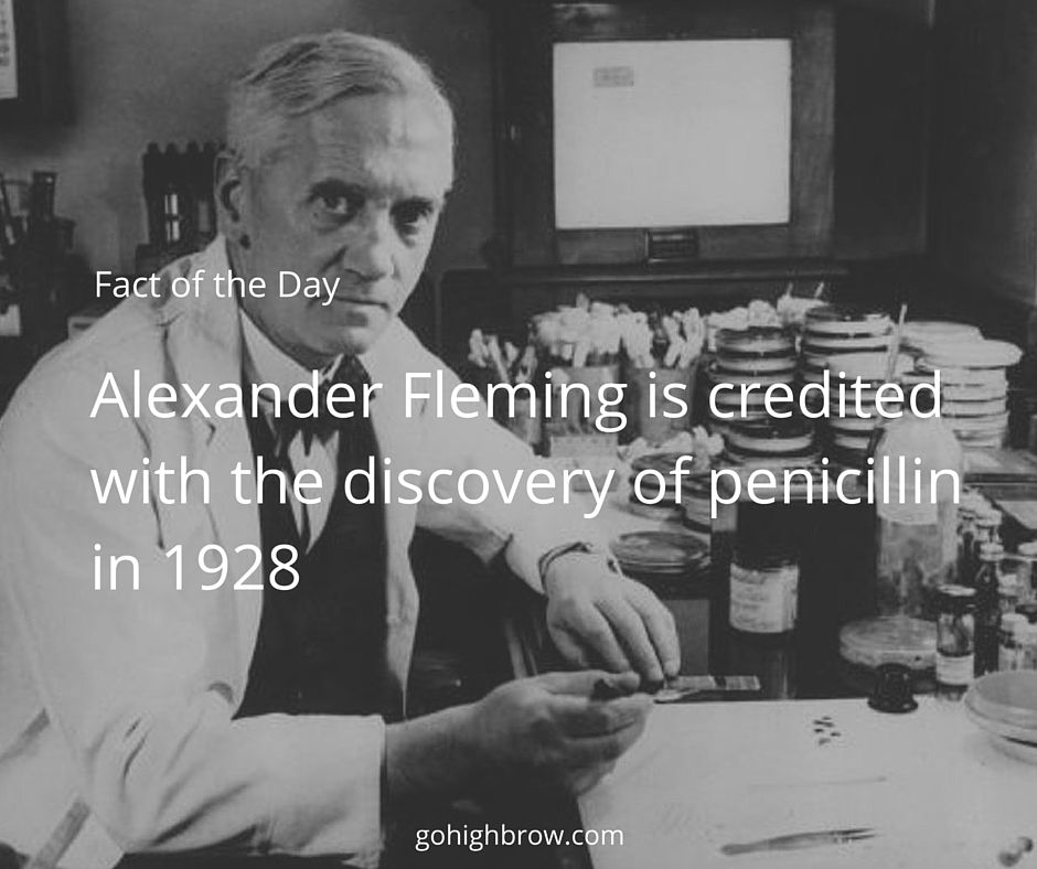 Alexander Fleming Is Credited With The Discovery Of Penicillin In