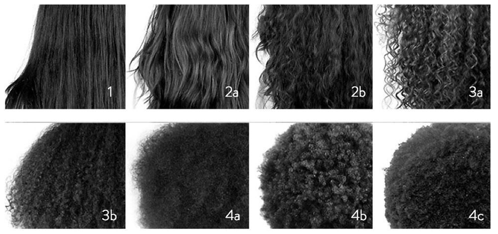 Image Result For Curl Types Chart Black Hair Curls Hair Type Chart Natural Hair Styles