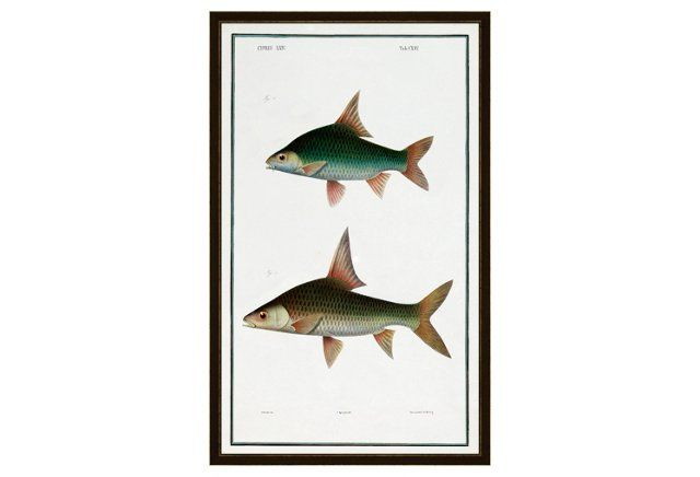 Fish Scale II