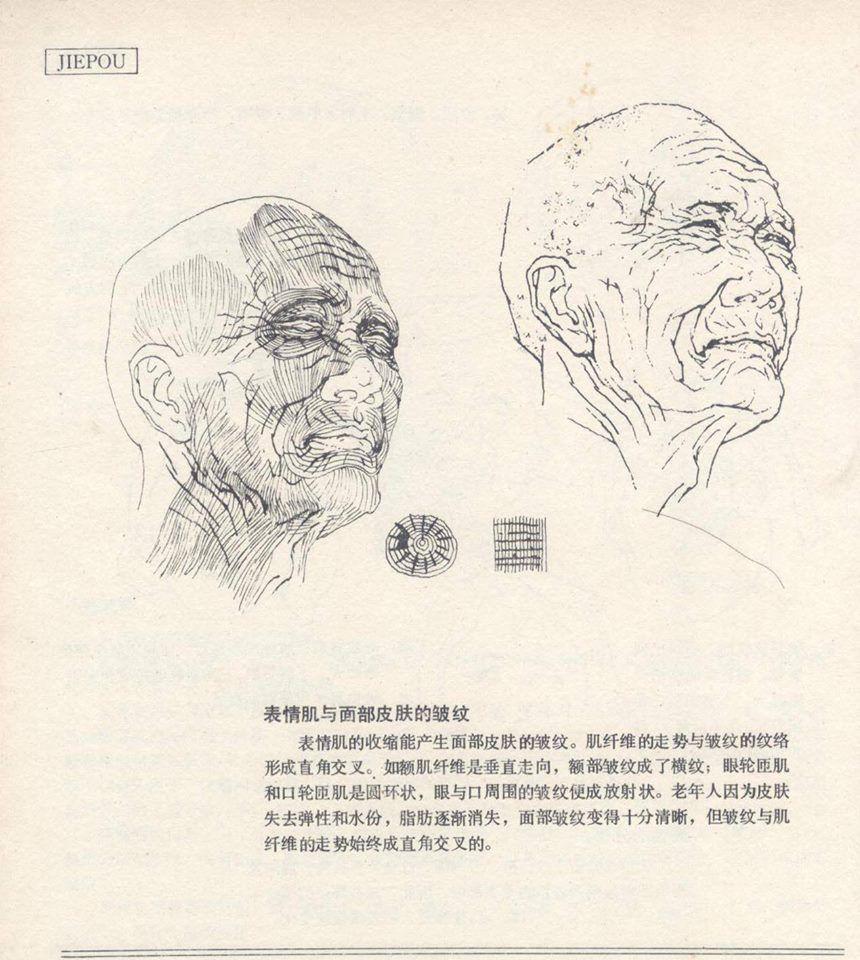 Artbook131 book art anatomy reference anime drawings